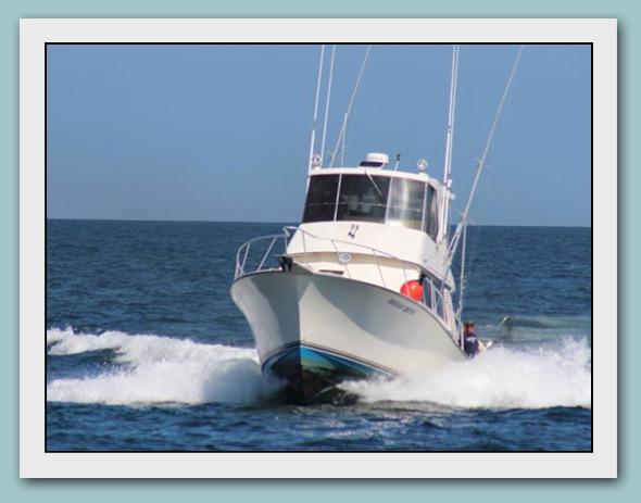 Megan beth fishing sport fishing charter boat in manasquan for Manasquan inlet fishing